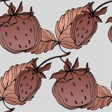 Плоды клубники вектора Медное выгравированное искусство чернил Безшовная картина предпосылки иллюстрация вектора
