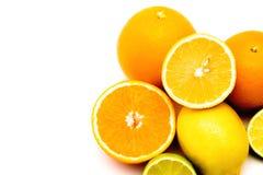 Плоды, тропические плоды, сочные плоды, цитрус, цитрусовые фрукты, апельсин, лимон, известка, грейпфрут, сочный, плод на белой пр стоковые фото