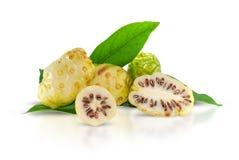 Плоды Noni или Morinda изолированные на белизне стоковые фото