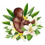 Плод акварели с флористическими украшениями иллюстрация штока