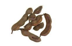 Плод тамаринда похожий на Стручк сырцовый стоковое изображение rf