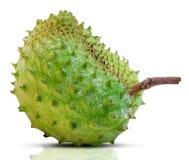 Плод Soursop изолированный на белизне стоковая фотография