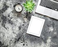 Плоская насмешка положения вверх по succulent часов таблетки компьтер-книжки рабочего места офиса Стоковое Изображение RF
