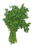 плоская петрушка листьев Стоковые Фотографии RF