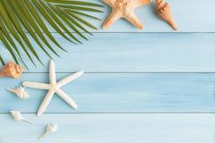 Плоские лист и seashell кокоса фото положения на голубой деревянной предпосылке стоковая фотография rf