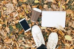 Плоский взгляд положения листьев осени, таблетки, телефона и бумажного стаканчика coffe Сверху с ногами Стоковое фото RF