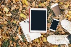 Плоский взгляд положения листьев осени, таблетки, телефона и бумажного стаканчика coffe Сверху с ногами Стоковая Фотография RF