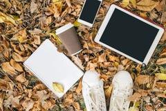 Плоский взгляд положения листьев осени, таблетки, телефона и бумажного стаканчика coffe Сверху с ногами Стоковые Изображения