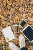 Плоский взгляд положения листьев осени, таблетки, телефона и бумажного стаканчика coffe Сверху с ногами Стоковые Изображения RF