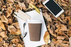 Плоский взгляд положения листьев осени, таблетки, телефона и бумажного стаканчика coffe Сверху с ногами Стоковые Фотографии RF