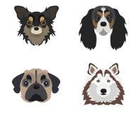 Плоский значок собаки Стоковое Изображение