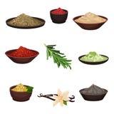Плоский набор вектора различных приправ Органические душистые ингредиенты для приправляя блюд Варить тему бесплатная иллюстрация