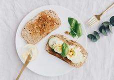 Плоский состав положения с кусками хлеба рож здравицы свежего с маслом, яичками и огурцом Стоковое Изображение