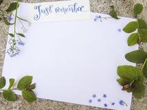 Плоский состав положения с литерностью каллиграфии как раз вспоминает украшенный с цветками незабудки и листьями зеленого цвета стоковые изображения rf