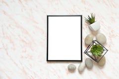 Плоский стол мрамора положения с белой пустой рамкой для текста, камней и предпосылки succulents стоковое изображение rf