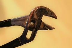 плоскогубцы Стоковая Фотография RF