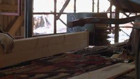 Плотник управляет промышленной машиной пилы с деревянным журналом сток-видео