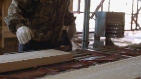 Плотник управляет промышленным стендом пилы с журналом тимберса акции видеоматериалы