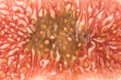плоть смоквы зрелая Стоковая Фотография RF