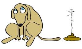 плохая собака Стоковое Изображение RF