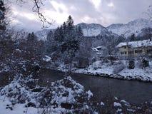 Плохое Goisern, Hallstatt, Австрия разветвляет зима взгляда вала снежка ели стоковое фото