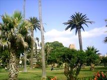 площадь Колумбии Стоковые Изображения RF