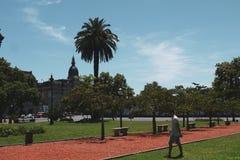 Площадь san Мартин парка королевская близко в Буэносе-Айрес стоковое изображение rf