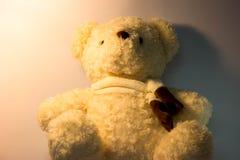 Плюшевый медвежонок с белой предпосылкой и мягким светом 2 стоковые фото