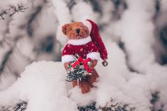 Плюшевый мишка рождества на снежной ели стоковое изображение rf