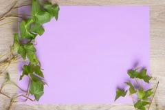 Плющ на бумаге цвета Стоковые Изображения