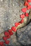 плющ осени близкий вверх Стоковое Фото