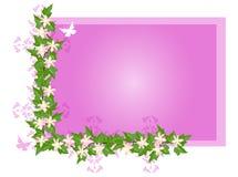 плющ цветка предпосылки бесплатная иллюстрация