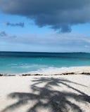 пляжи Багам Стоковые Изображения RF