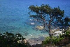 Пляжи Lloret de mar стоковое фото rf