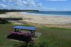 Пляж Австралия угорь стоковое фото rf