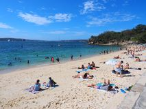 Пляж акулы, парк Нильсена, Воклюз, Сидней, Австралия Стоковое Изображение RF