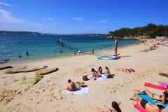 Пляж акулы, парк Нильсена, Воклюз, Сидней, Австралия Стоковые Фотографии RF