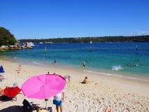 Пляж акулы, парк Нильсена, Воклюз, Сидней, Австралия Стоковые Фото