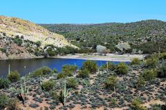 Пляж Аризона Джонса мясника, национальный лес Tonto стоковое изображение
