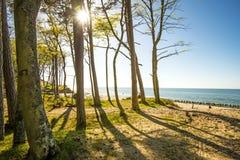 Пляж Балтийского моря в Orzechowo, Польше Стоковое Фото