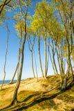 Пляж Балтийского моря в Orzechowo, Польше Стоковые Изображения