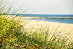 Пляж Балтийского моря с травой пляжа Стоковые Изображения RF