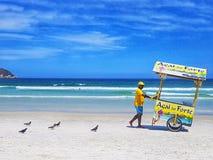 Пляж Бразилии лета Рио-де-Жанейро стоковое изображение