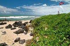 пляж Бразилия делает praia pipa сценарный Стоковые Фото