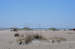пляж вакантный Стоковое Изображение RF