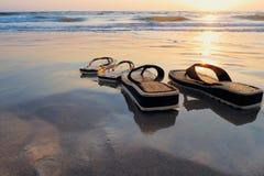 пляж влажный Стоковые Фотографии RF