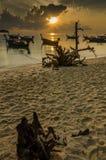 пляж восхода солнца с передним планом пня Стоковые Фотографии RF