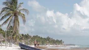 Пляж в Tulum, Мексике сток-видео