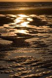 пляж детализирует воду Стоковые Изображения RF