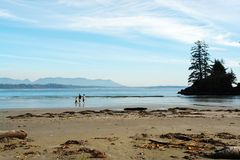 пляж длиной Стоковые Фотографии RF